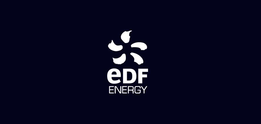 edf vr experience logo